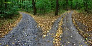 paths (1)