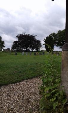 graves again